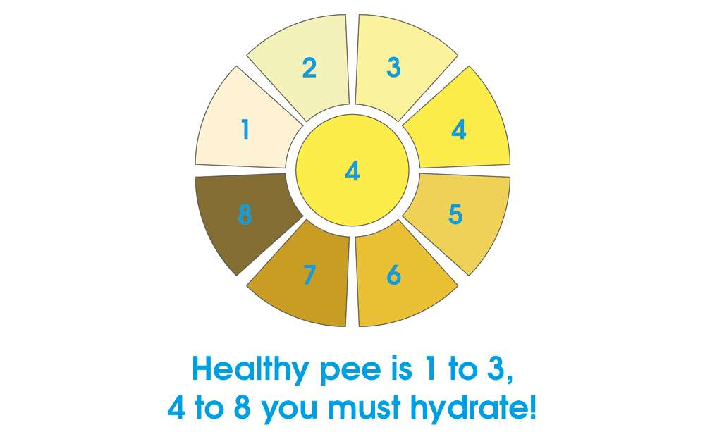 Healthy Pee Chart