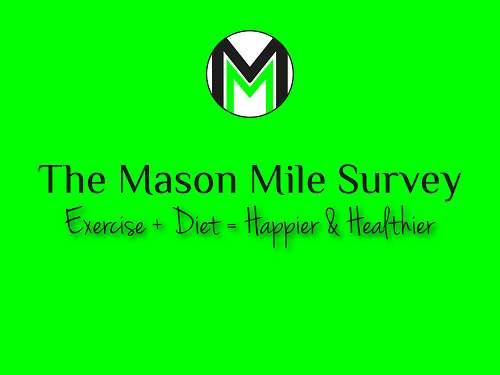 Mason Mile Survey Logo